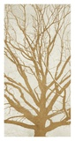 Golden Tree II Giclee Print by Alessio Aprile