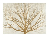 Golden Tree Giclee Print by Alessio Aprile