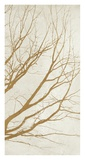 Golden Tree III Giclee Print by Alessio Aprile