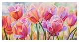 Tulips in Wonderland Giclee Print by Cynthia Ann