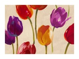 Tulip Funk Giclee Print by Luca Villa