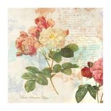 Redoute's Roses 2.0 I Giclee Print by Eric Chestier