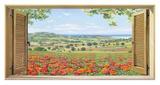 Finestra su campo di papaveri Giclee Print by Andrea Del Missier