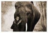 Healing Embrace Reproduction procédé giclée par Marc Moreau