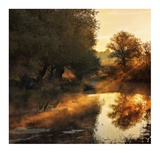 When Nature Paints With Light Giclee Print by Jimbi