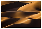 Light And Shadow Giclee Print by Mohammadreza Momeni