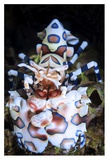 Harlequin Shrimp Giclee Print by Barathieu Gabriel