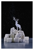 Reindeer (Powdered Sugar) Giclee Print by Dina Belenko