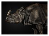 Last Unicorn Giclee Print by Pedro Jarque