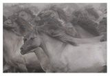 Wildhorses Giclee Print by Dieter Uhlig