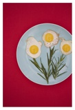 Flower Eggs Giclee Print by Sarah Saratonina