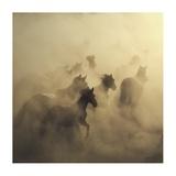 Migration Of Horses Giclee Print by Huseyin Ta?k?n