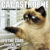 Cat-Astrophe - 2018 Calendar Calendars