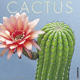Cactus - 2018 Calendar Kalenders