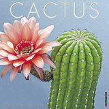 Cactus - 2018 Calendar Calendars