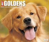 Just Goldens  - 2018 Boxed Calendar Calendars