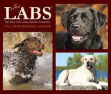 Just Labs - 2018 Boxed Calendar Calendars