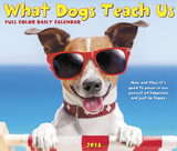 What Dogs Teach Us - 2018 Boxed Calendar Calendars