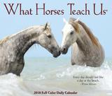 What Horses Teach Us - 2018 Boxed Calendar Kalenders