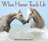 What Horses Teach Us - 2018 Boxed Calendar Calendars