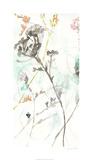 Wildflower Breath I Limited Edition by Jennifer Goldberger