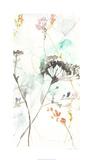 Wildflower Breath II Limited Edition by Jennifer Goldberger