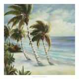 Tropical 4 Posters par Inc, DAG