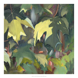 Leaf Array II Giclee Print by Sandra Iafrate