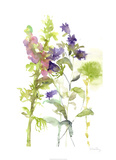 Watercolor Floral Study I Limited Edition by Melissa Wang