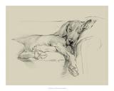 Dog Days I Giclee Print by Ethan Harper