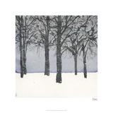 Forest Sketch I Édition limitée par Samuel Dixon