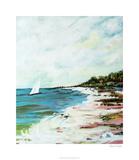 Beach Surf I Limited Edition by Karen Fields