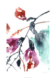 Hanging Fuchsia II Limited Edition by Jennifer Goldberger
