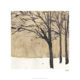 Forest Sketch II Édition limitée par Samuel Dixon