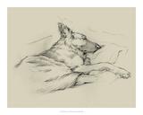 Dog Days IV Giclee Print by Ethan Harper