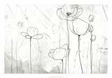 Poppy Sketches II Giclee Print by June Erica Vess