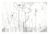 Poppy Sketches I Giclee Print by June Erica Vess