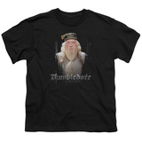 Youth: Harry Potter- Dumbledore At The Doors T-shirts