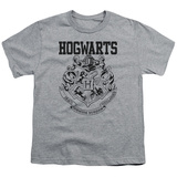 Youth: Harry Potter- Hogwarts Athletic Shirts