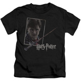 Juvenile: Harry Potter- Wand And Portrait T-shirts