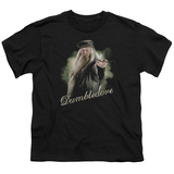 Youth: Harry Potter- Dumbledore Wand Ready Shirt