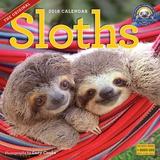Sloths - 2018 Calendar Calendarios