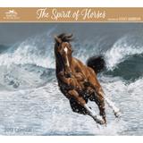 Lesley Harrison - The Spirit of Horses - 2018 Calendar Calendars