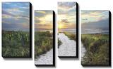 Morning Trail *Exclusive* Bedruckte aufgespannte Leinwand von  Celebrate Life Gallery
