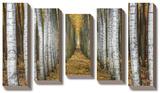 Tree Farm *Exclusive* Bedruckte aufgespannte Leinwand von Michael Cahill