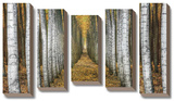 Tree Farm *Exclusive* Stretched Canvas Print by Michael Cahill