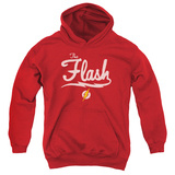 Youth Hoodie: The Flash- Lightning Script Logo Pullover Hoodie