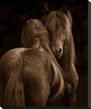 Tenderness I Stretched Canvas Print by Tony Stromberg