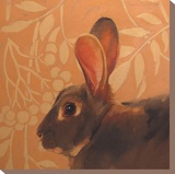 The Hare Stretched Canvas Print by Diane Hoeptner