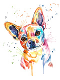 Chihuahua Posters by Lisa Whitehouse